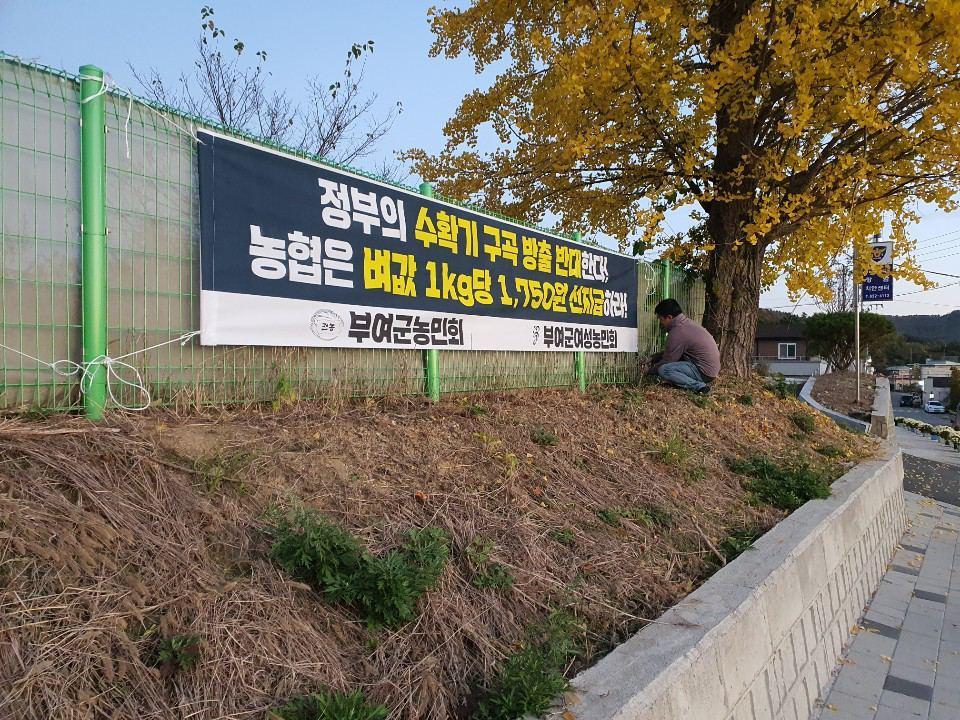 photo_2020-10-29_09-41-37.jpg