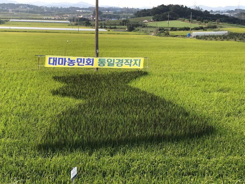 photo_2020-09-16_14-48-44.jpg